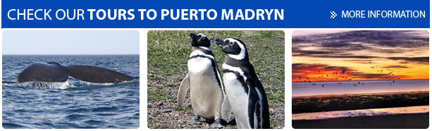 Tours to Puerto Madryn