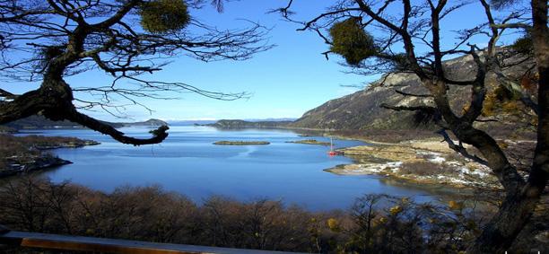 Tierra Del Fuego National Park Half Day Tour
