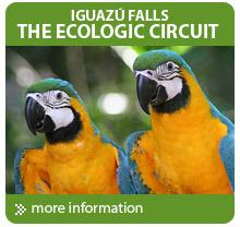 Tours to the Iguazu Falls Argentina