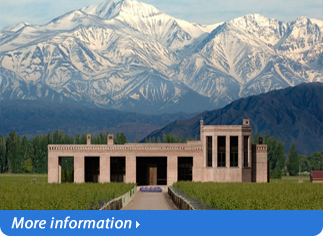 LUXURY TOUR IN MENDOZA