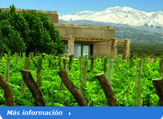 tour to Mendoza