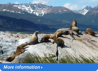 OPTIONAL EXCURSIONS IN USHUAIA