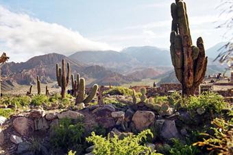 Explore Adventure and Nature Tourism in Salta!